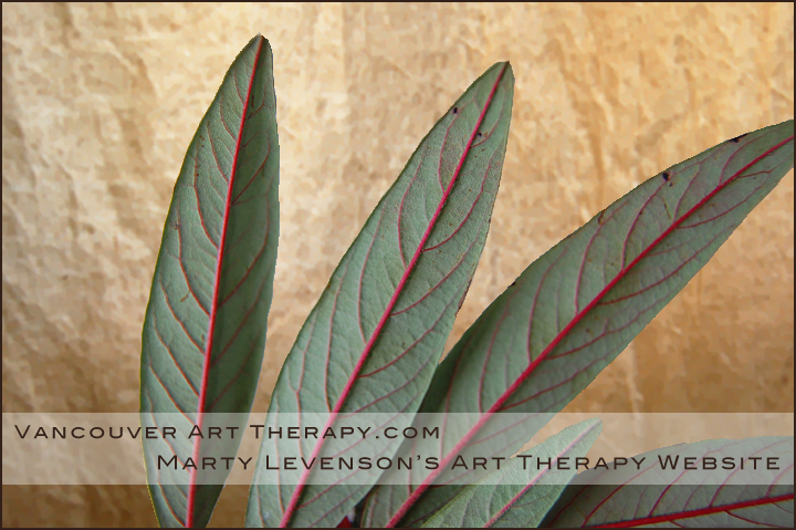 Marty Levenson's Vancouver Art Therapy website, Vancouver, BC